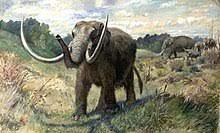 Mastodon - Wikipedia